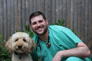 Austin Stein, DVM - Vinegar Hill Veterinary Group